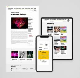 Strony internetowe - web design & development